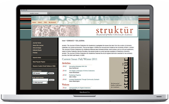 Struktür Digital Commons journal site design
